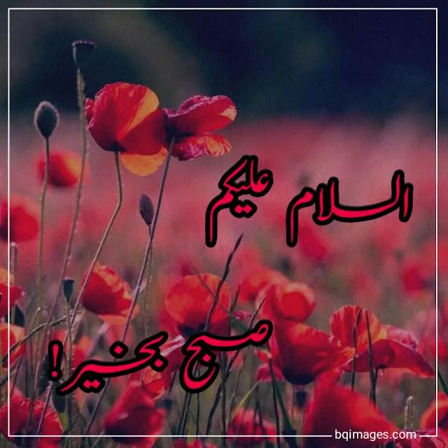 subha bakhair images in urdu download