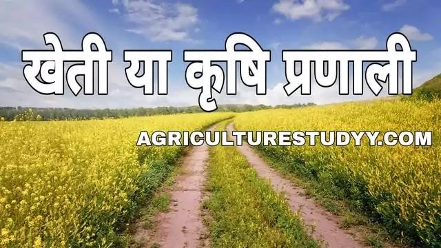 खेती या कृषि प्रणाली (krishi pranali) क्या है अर्थ एव परिभाषा, कृषि प्रणाली के प्रकार, खेती की प्रणाली, कृषि प्रणाली के क्षेत्र, खेती प्रणाली के दायरे