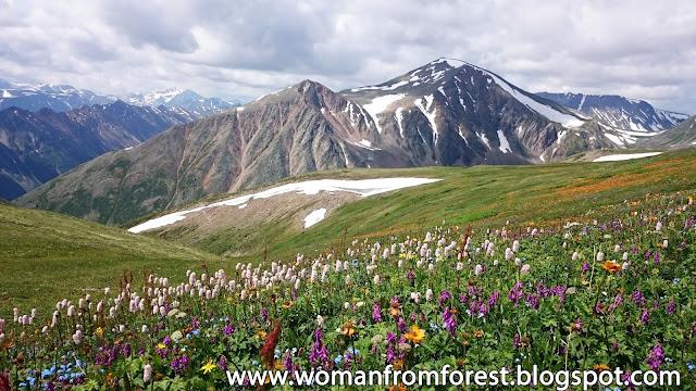 http://womanfromforest.blogspot.com/2016/10/dzika-syberia-fotorelacja-z-wyprawy-z.html