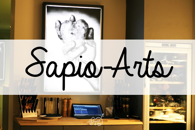 Sapio Arts