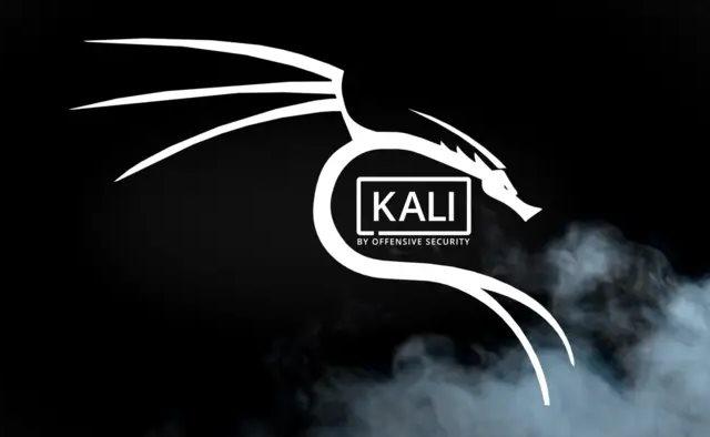 الإصدار التانى لعام 2019.2 من kali linux متاحة للتنزيل