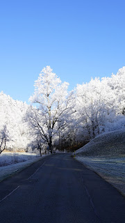 Hill Frost Road Trees Mobile HD Wallpaper