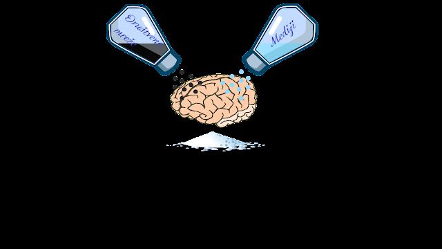 Zagađenje mozga
