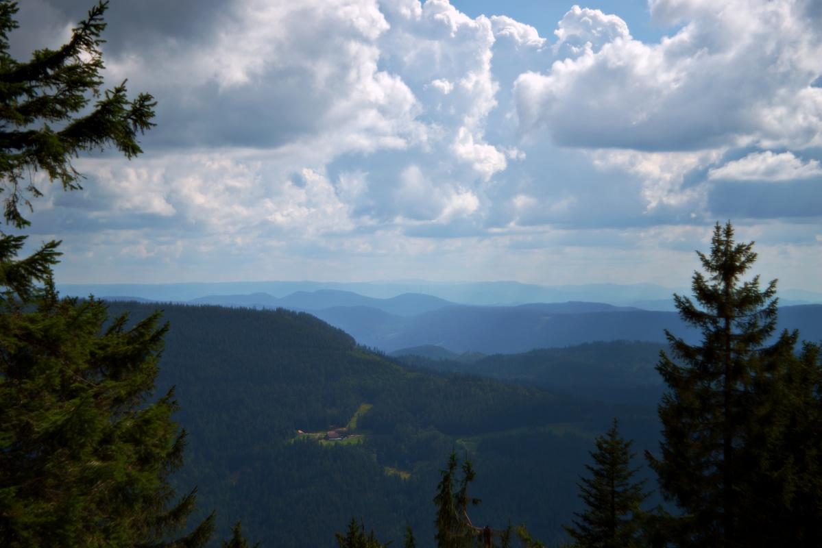 Pentacon AV f2.8 80mm Projektionsobjektiv adaptiert Fernsicht Schwarzwald