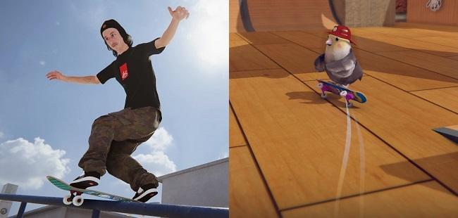 Differences in Skater XL vs Skatebird