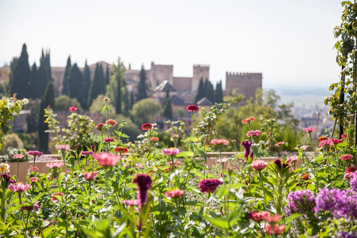 Frente a la alhambra de granada semillasdeacacia for Jardines de gomerez granada