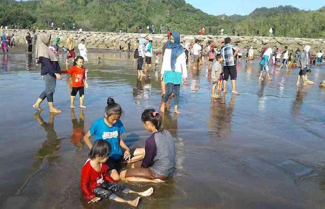 Pantai Cemara Sewu Cilacap: Lokasi, Rute, dan Harga Tiket