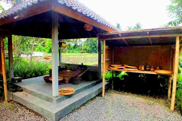 Mencicipi Kopi Luwak di Bali