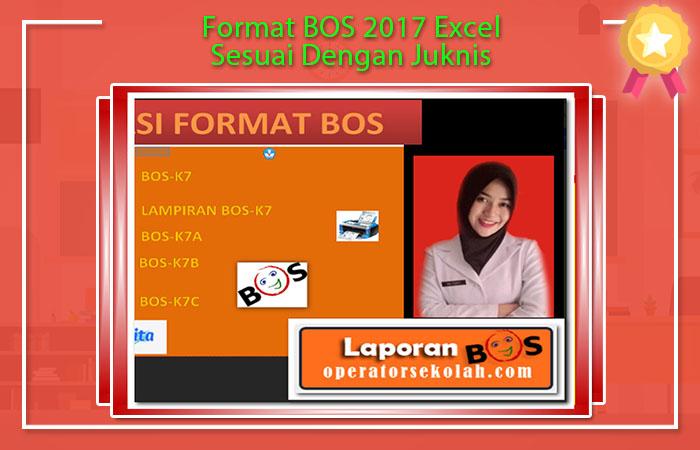 Format Laporan BOS 2017