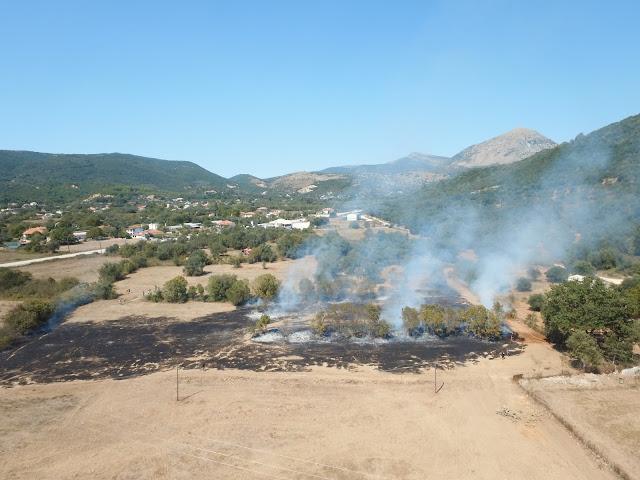 Φωτιά πριν λίγο στη Μαζαρακιά Θεσπρωτίας (+ΒΙΝΤΕΟ)