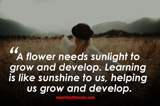 A flower needs sunlight to grow and develop. Learning is like sunshine to us, helping us grow and develop.