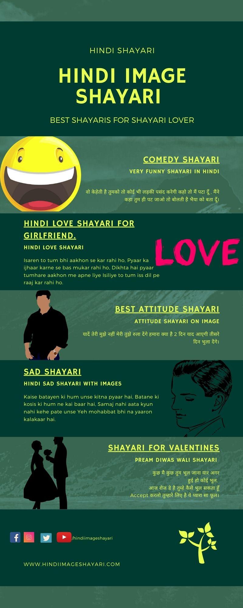 Hindi Image Shayari Infographic