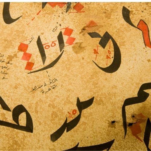 اللغة العربية وفروعها
