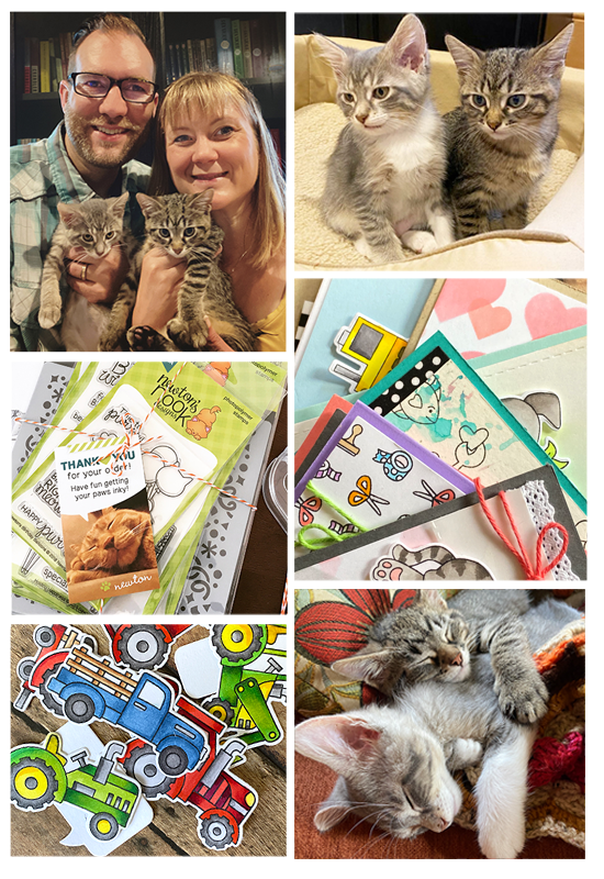 Newton's Nook Designs 7 YEAR Celebration Blog Hop | Photos of Cards, Jen, Jeff, and the kittens