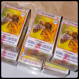 jual kapsul jamu lebah sari bumi di kalimantan