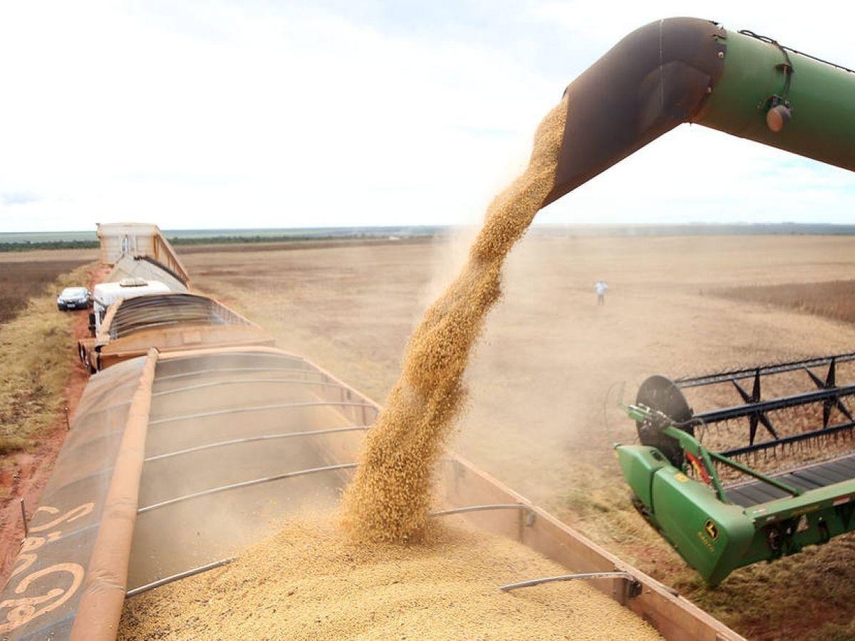 Brasil supera marca de exportação e deve ter nova safra recorde