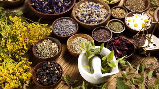 Anambra Identifies Six Herbal Drugs For COVID-19 Management