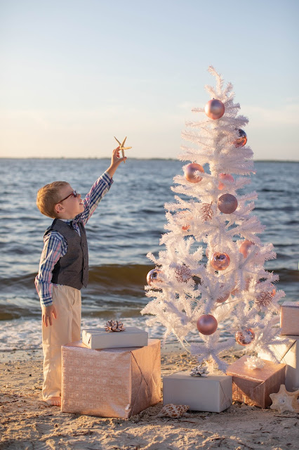 Sanibel Island Christmas Pictures | SWFL Photographer