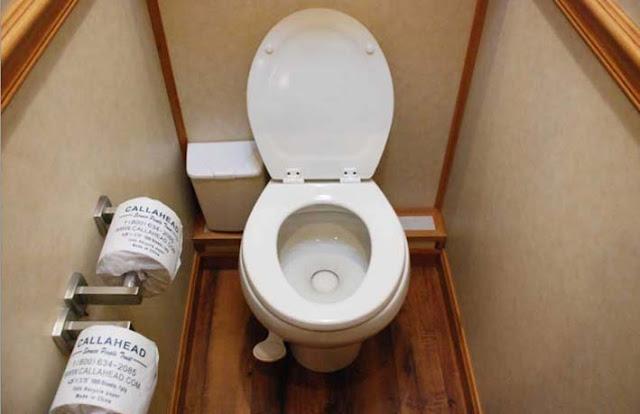 Porcelain Toilet in The Regency