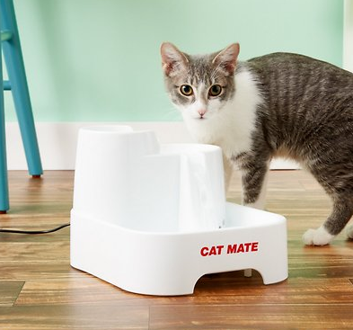 Top Five Friday: Five fun pet water fountains for cats #FridayFive