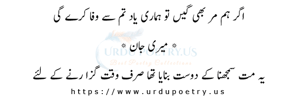 Funny Jokes About Friends in Urdu