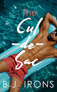 The Cul-De-Sac - A Gay (LGBT) Humor Romance-Erotica book promotion by B.J. Irons