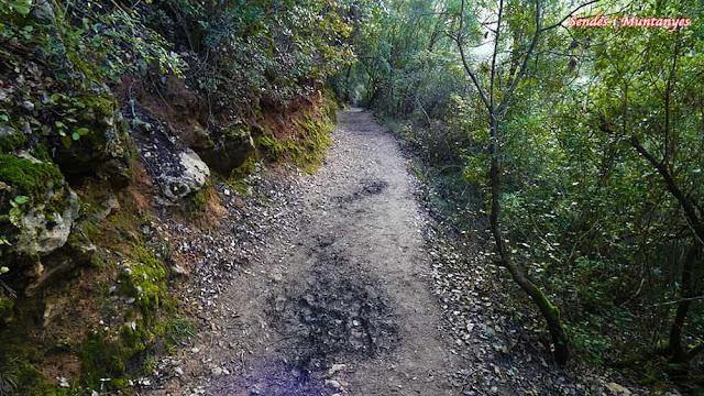 Camino cerrada Elías, río Borosa, Pontones, Sierra de Cazorla, Jaén, Andalucía