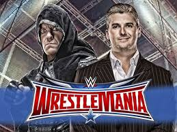 The results of Undertaker vs Shane McMahon in WWE wrestlemaina 2016