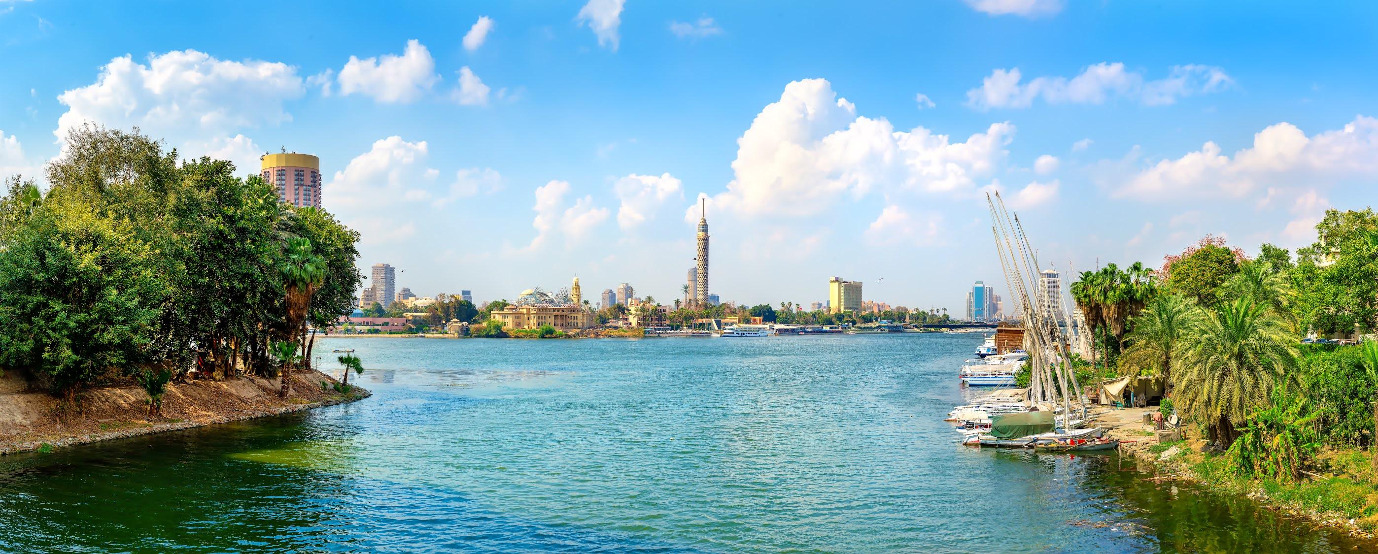 السيسي يوجه بتحقيق أقصى عائد للأصول غير المستغلة بقطاع الأعمال العام في مصر