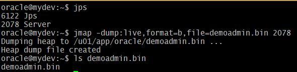 WebLogic server Heap dump