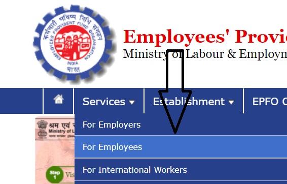 epfindia.gov.in member portal