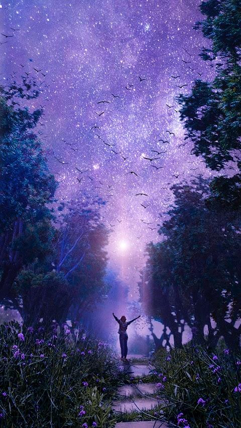Bầu trời mộng mơ