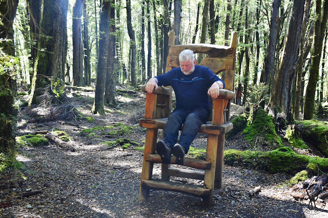 wooden chair, forest, Kiwi man