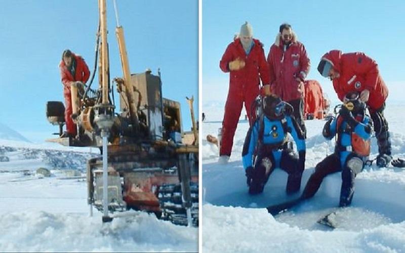 Científicos se quedaron atónitos después de bucear bajo el hielo en la Antártida