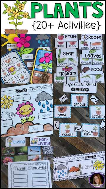 Plant activities and lessons are perfect for the spring months.  There are so many opportunities for hands on learning.  Plant Activities and Lessons is a cross-curricular unit that will help you meet both literacy and science standards and goals.