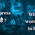 What is wordpress kay hai in hindi