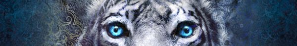 Resenha: A Maldicao do Tigre, de Colleen Houck 9