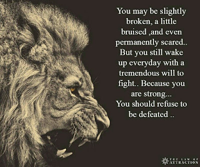 The Lion Law Quotes