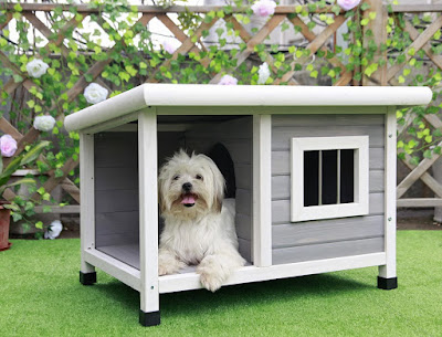 Top 10 Best Dog House Outdoor in 2020 New Reviews