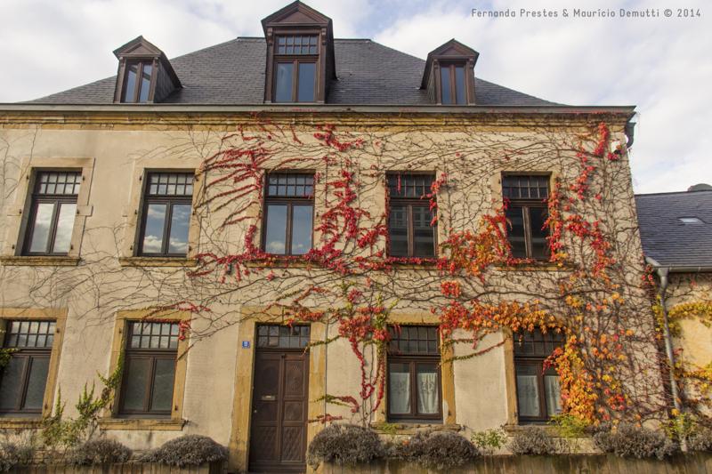 casa coberta de folhas do outono