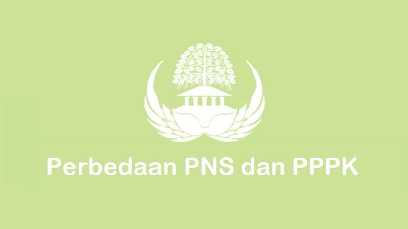 apa perbedaan pns dan pppk