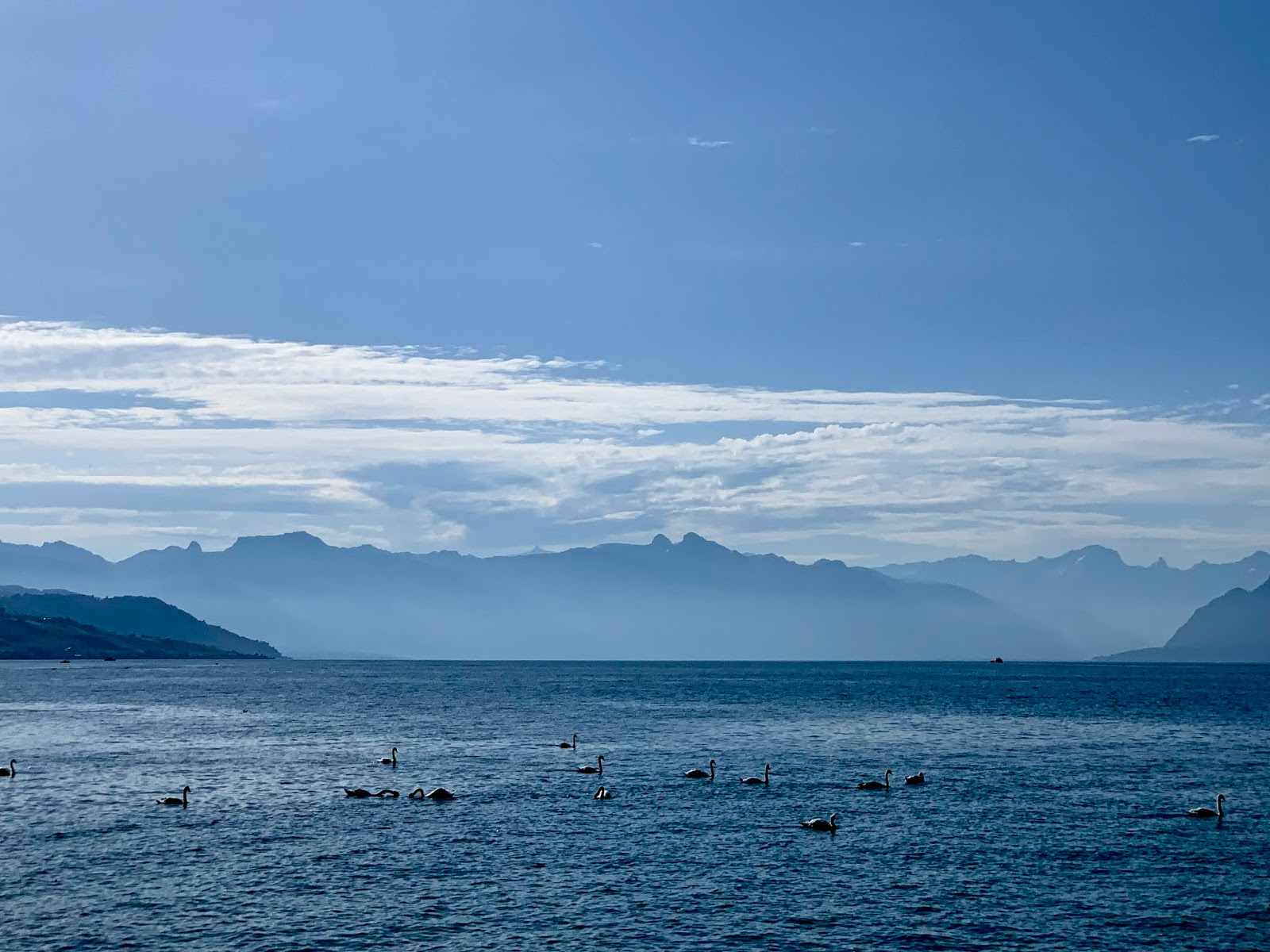 best things to do in Lausanne