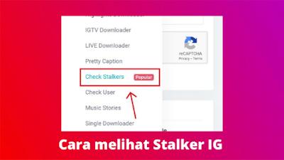 Cara check stalker Instagram