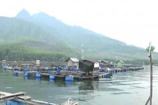 Kampung Kerapu Situbondo