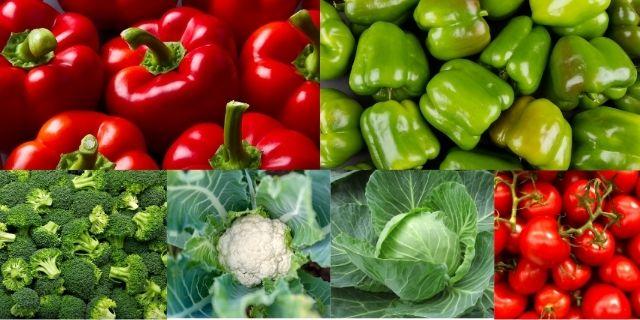 Super Mini Combo  pack offer of vegetable seeds | only 210tk