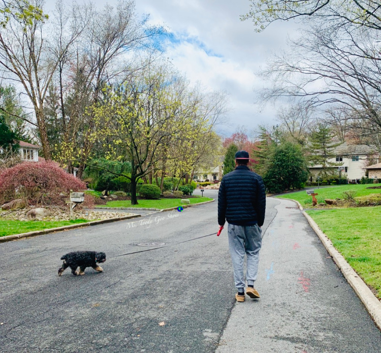 APRIL 2020 PHOTO DIARY: LIFE IN QUARANTINE | Ms. Toody Goo Shoes