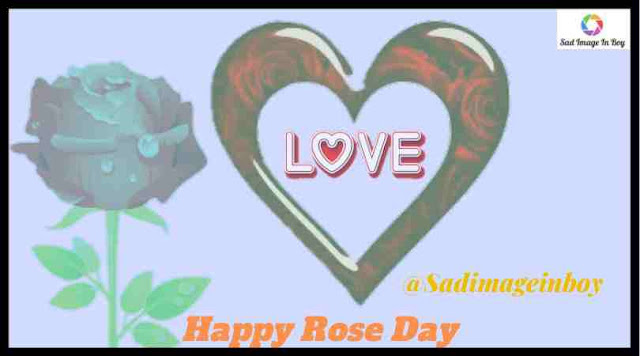 Rose Day Images | images of happy rose day, download rose day images, rose day hd images, pictures of rose