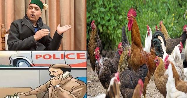 हिमाचल में चोरी हुआ मुर्गा: पुलिस ने नहीं दर्ज किया केस तो CM हेल्पलाइन में शिकायत- फिर...