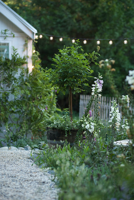 french country cottage garden with flowers