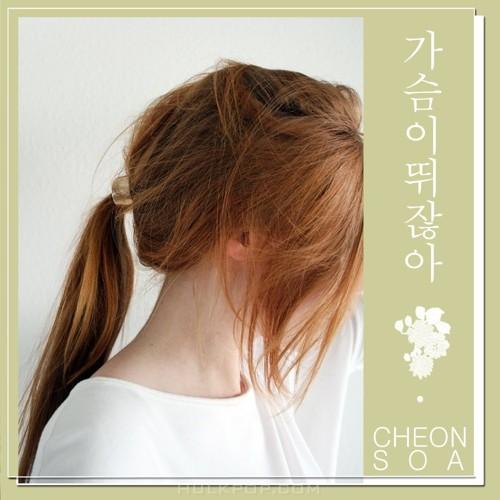 Cheon Soa – Love Affair